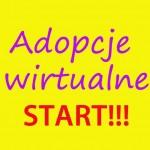 adopcje wirtualne